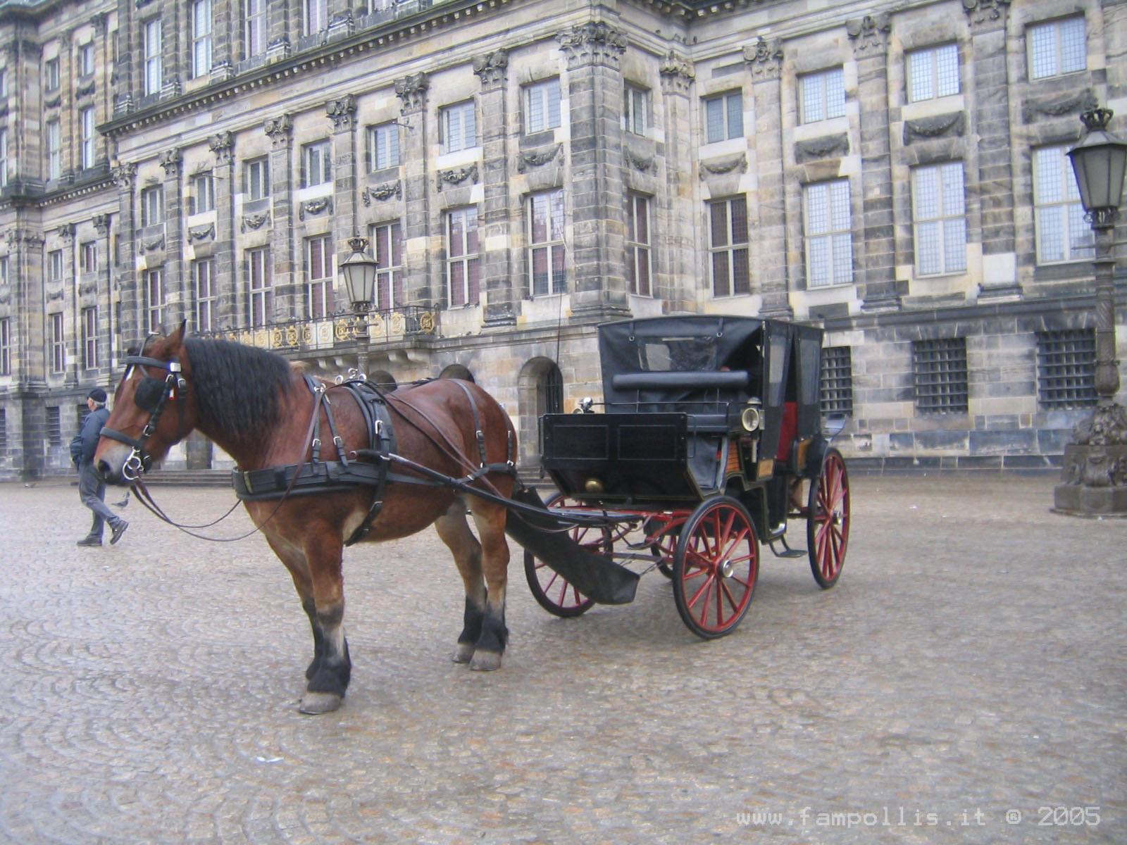 Amsterdam le visite guidate a piedi i tour delle agenzie - Agenzie immobiliari amsterdam ...